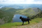Pet Friendly Lake District Cottages